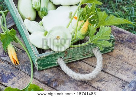 Full Wooden Box Of Green Courgettes And Squashes, Wooden Background