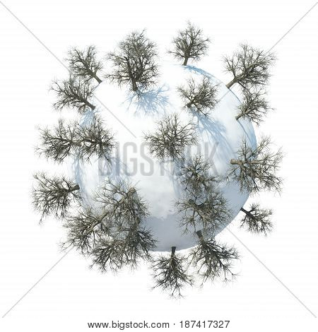 3D Winter Planet with white background