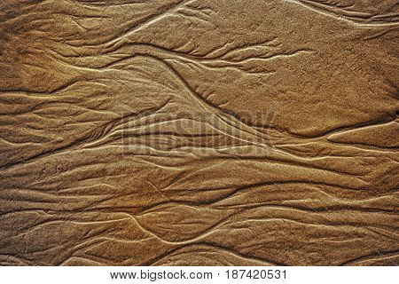 Texture Of Wet Golden Sea Sand With Traces Of  Water