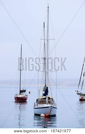 May 10, 2017 in Monterey, CA:  Sail Boats anchored at the Monterey Bay, CA on a foggy day where people can anchor their boats and yachts while visiting Monterey Bay and the Northern California Coast