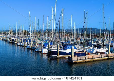 May 19, 2017 in Monterey, CA:  Sail boats, motor boats, and yachts docked at the Monterey Bay Harbor Marina where people can rents boats or ride their own boats in the Pacific Ocean taken in Monterey Bay, CA