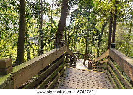Stairway leading down in the park outdoors