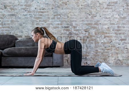 Pretty slim sportswoman practicing gymnastics doing exercises standing on all fours indoors.