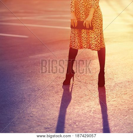 Fashion Woman In Leopard Dress With Clutch Handbag Posing Evening On Sunset Light, Vintage Colors Ph