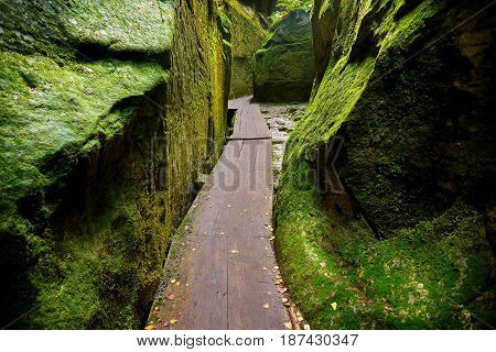 Fantastic view of the wooden footbridge run between wallsf of green canyon Siberia. Teplice-Adrspach Rock Town. Czech Republic. Artistic picture. Beauty world.