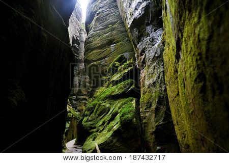 Fantastic view of the green canyon Siberia. Teplice-Adrspach Rock Town. Czech Republic. Artistic picture. Beauty world.