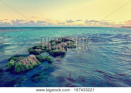 Caribbean rocky coast at dusk. Beautiful rocky sea beach rocky shore. Punta Cana. Dominican Republic