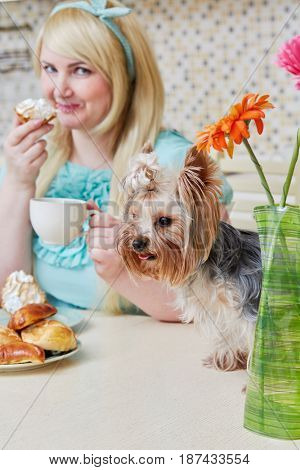 Plump woman sits eating homemade baked sweets at table in kitchen, focus on little dog sitting near on table.
