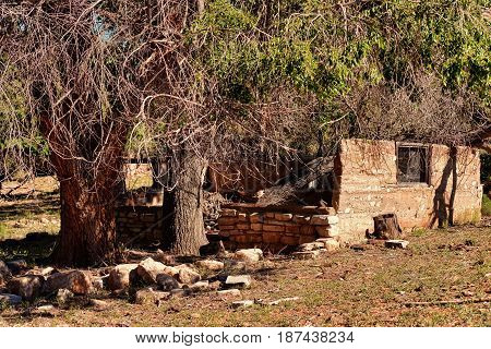 Ruins of old abandoned house in middle of forest