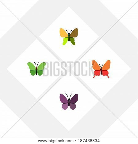 Flat Monarch Set Of Violet Wing, Milkweed, Danaus Plexippus And Other Vector Objects. Also Includes Moth, Insect, Monarch Elements.