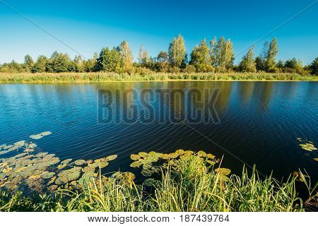 Landscape With Lake Pond River At Summer Sunny Evening. Nature Of Belarus And European Part Of Russia