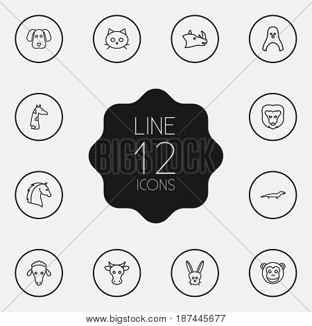 Set Of 12 Alive Outline Icons Set.Collection Of Cat, Monkey, Lion And Other Elements.