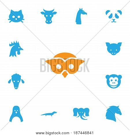 Set Of 13 Brute Icons Set.Collection Of Diver, Ape, Steed And Other Elements.