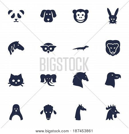 Set Of 16 Brute Icons Set.Collection Of Bear, Trunked Animal, Diver And Other Elements.