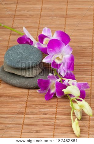 Photo of orchids and spa-stones on bamboo background