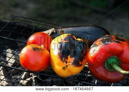 Grilled vegetables - Red and yellow pepper eggplant and tomato on the grid grill close up