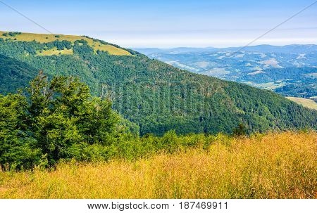 Countryside Summer Landscape With Field, Forest And Mountain Ridge