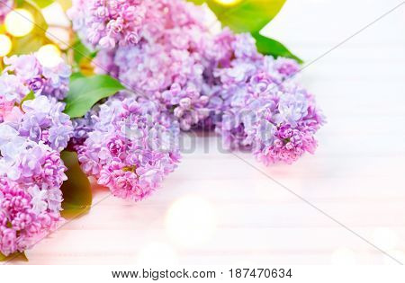 Lilac flowers bunch on white planks wood background. Beautiful violet Lilac flower still life Easter border design on wooden table. Beauty fragrant Lilac Flowers bouquet with Copy space