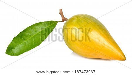 Pouteria Campechiana Isolated On The White Background