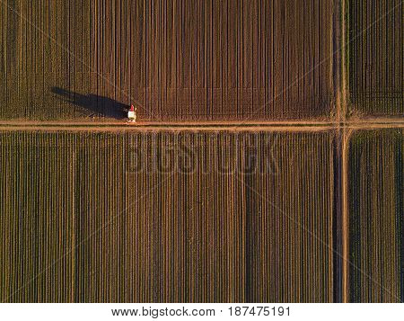 Aerial view of tractor in cultivated corn maize crop field agricultural machinery with crop sprayer spraying pesticide chemical on plantation