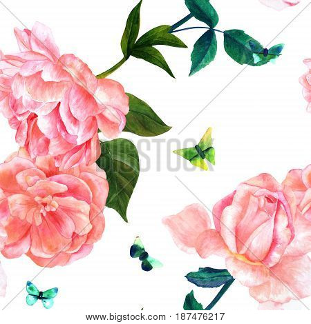Seamless pattern with watercolor drawings of blooming pink roses, camellias, peonies, and butterflies, hand painted on white background in style of vintage botanical art