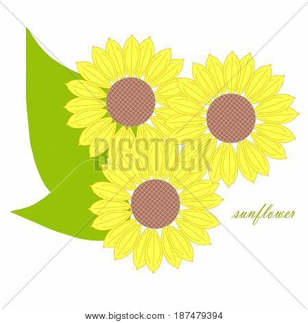 Yellow sunflowers, green leafs for decorated on white stock vector illustration