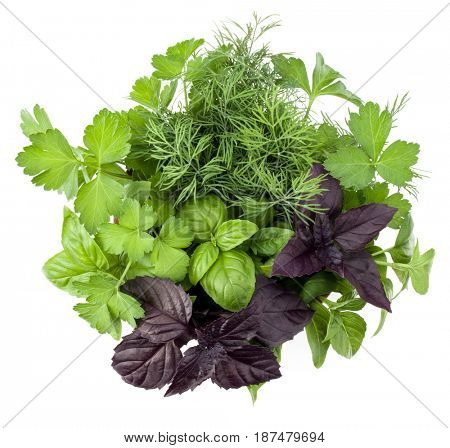 Fresh spices and herbs bouquet isolated on white background cutout. Sweet basil, red basil leaves, dill and parsley. Top view.