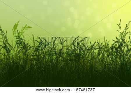 Spring background. Natural background with bokeh. Summer. A park. Regeneration. Close-up. Nature awoke.