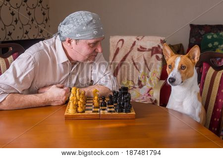 Mature man asking basenji dog to make next move in a chess family tournament
