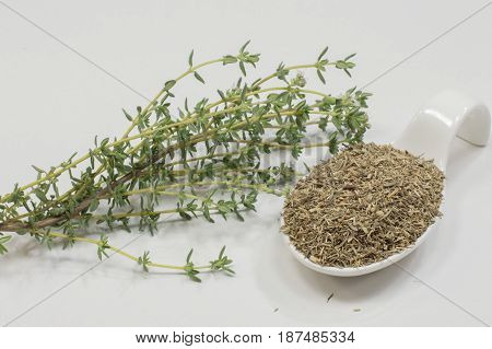 A spoon with dried thyme leaves and a fresh thyme branch