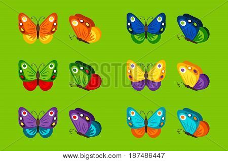 Colorful butterflies icons on bright geen background. Vector illustration
