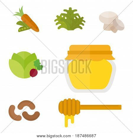 Vegan food nature restaurant fruit vegetarian healthy diet vegetable vector illustration. Cooking graphic cuisine vegetables health plant nutrition set isolated on white