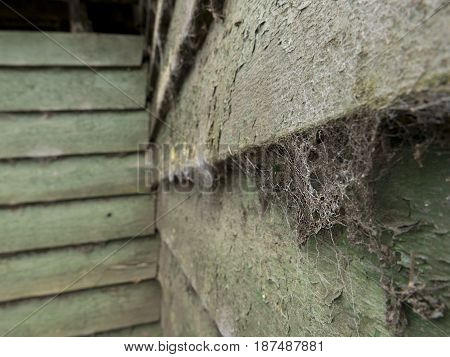 Close up of cobwebs on the wooden side of a windmill