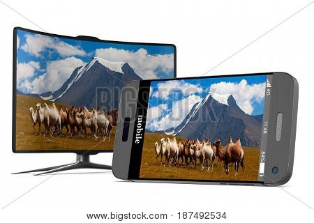 phone and tv on white background. Isolated 3D illustration