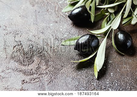 Black Olives on branch with leaves over brown stone background