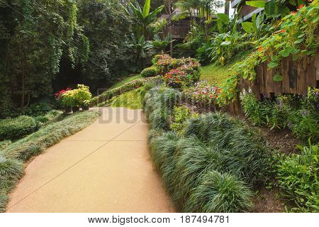 Pathway With Green Grass In Garden At Public Park
