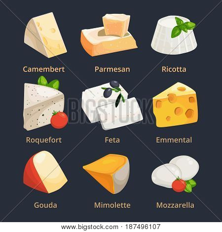 Cartoon illustration of different cheeses. Vector pictures set cheese camembert and parmesan, ricotta and mimolette