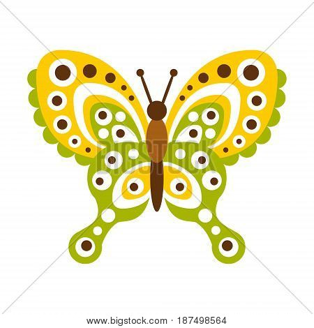Colorful butterfly with open wings vector Illustration isolated on a white background