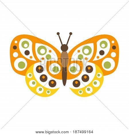 Cute colorful butterfly with open wings vector Illustration isolated on a white background
