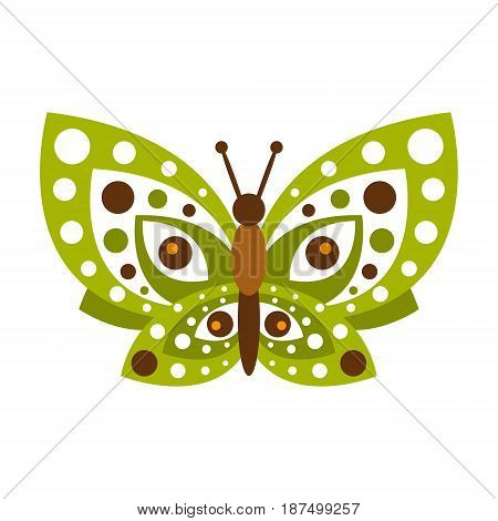 Green butterfly with open wings vector Illustration isolated on a white background