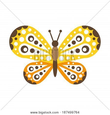 Colorful beautiful butterfly with open wings vector Illustration isolated on a white background