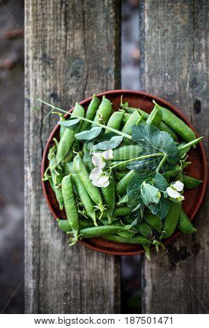 Fresh organic green peas in rustic style
