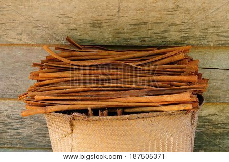 A woven basket full of dry cinnamon sticks on the plantation of the cinnamon in Asia