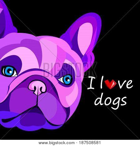 French bulldog background. Vector illustration. Dog illustration french
