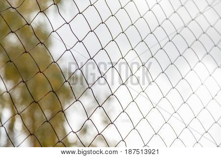 Metal mesh netting on blurred background. Autumn day