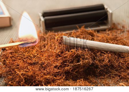 A Rolled Cigarette Against The Backdrop Of Tobacco