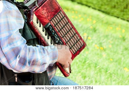 the man plays an accordion on a green lawn in clear summer day