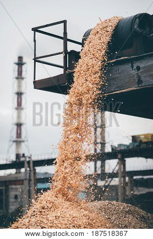 pile of raw material at paper mill factory