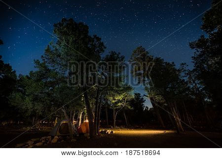 Two tents set among the trees in a camping site in a park with a lot of stars in the night sky