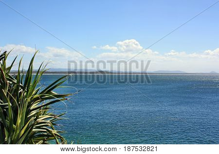 Noosa National Park View